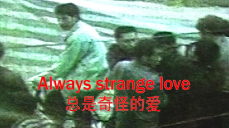 Huang Xiaopeng, Guess Love Everyday