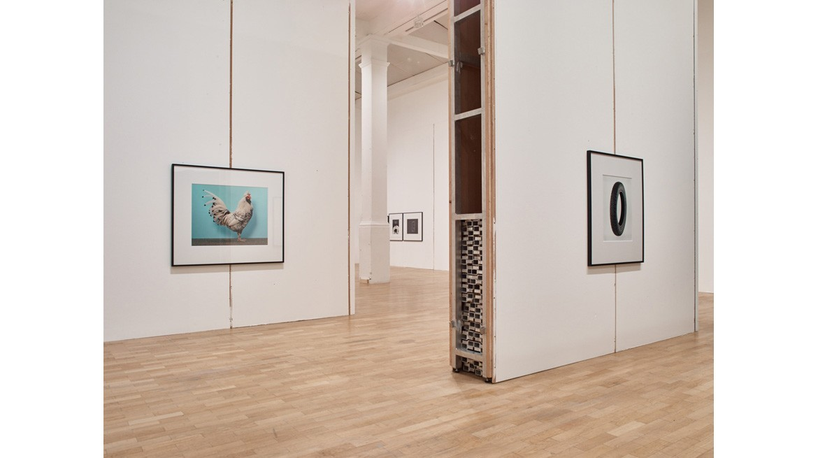 Christopher Williams For Website 3 - The Production Line of Happiness, Gallery 1, Installation View 3