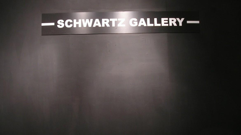 FT gallery_Schwartz Gallery