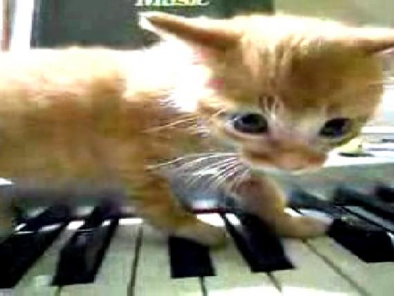drei-klavierstucke-2009-003-still-6-press-ih