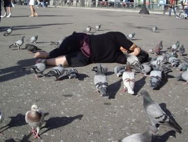 - Sonia Khurana, Logic of birds, 2006, video/photo series