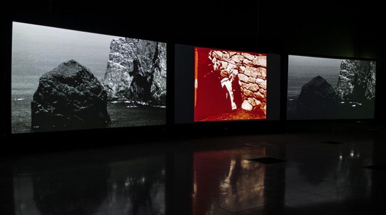 Shona Illingworth, Lesions in the Landscape. Installation View