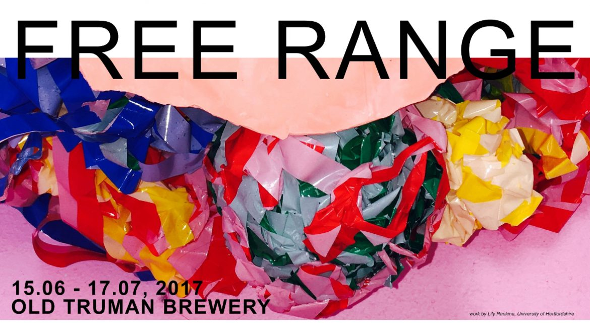 First Thursday Gallery Free Range Shows Lily Rankine