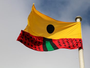 Pan African Flag for the Relic Travellers_ Alliance-17