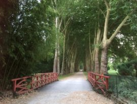 Richelieu Biennale_Bridge_avenue of trees Clare_Stent.jpg