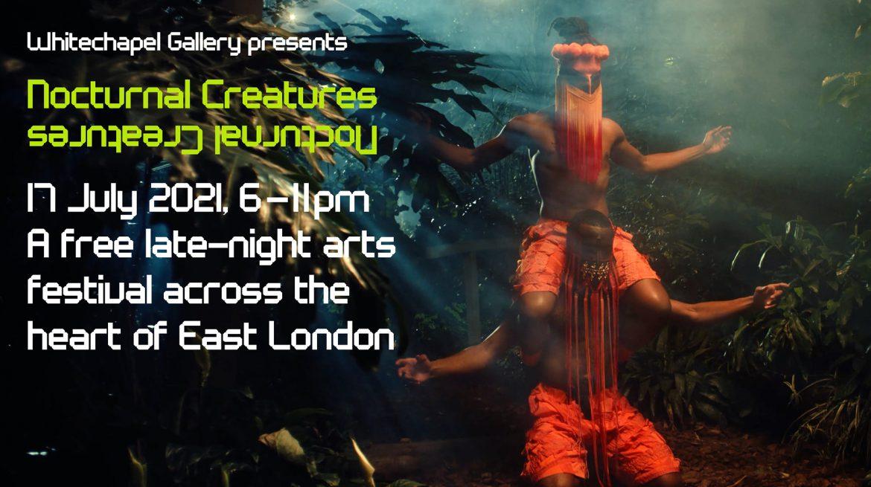 NocturnalCreatures_web crop_ToGo (1)