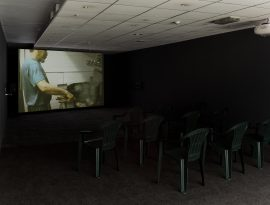 Installation views of Will Pham: Little Vietnam at TURF Projects