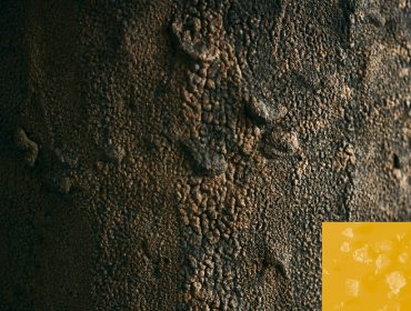 WaysOfKnowing_Earth:Matter_Thumbnail_ToGo